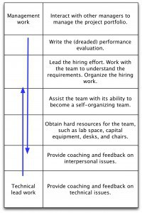 Figure 1: The continuum of technical lead work to management work
